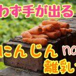 いつからあげる?にんじんを使った離乳食おすすめレシピ5選!
