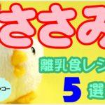 いつからあげる?ささみを使った離乳食おすすめレシピ5選!